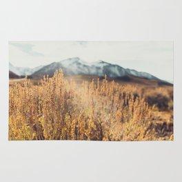 Eastern Sierras No 473 Rug