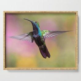 Hummingbird Fluttering its Wings Serving Tray