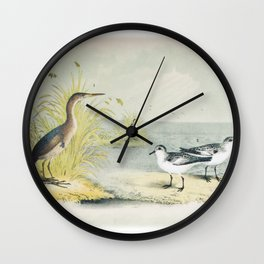 PLATE XL The Least Bittern The Sanderling, or Ruddy Plover Ornithology Birds Vintage Studies America Wall Clock
