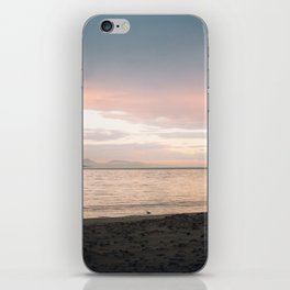 Coles Bay Sunset Seagull iPhone Skin