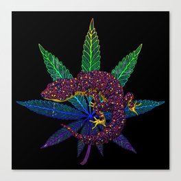 Gecko leaf Canvas Print