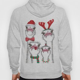 Christmas family ostrich Hoody