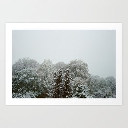 Snowfall in November. Art Print