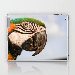 Macaw Close up Laptop & iPad Skin
