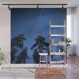 Shimmering Blue Night Sky Stars Wall Mural