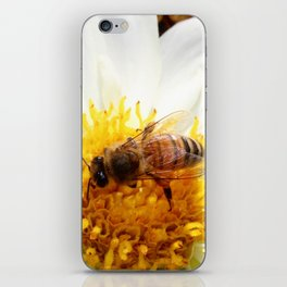 Bumble Bee on Flower iPhone Skin