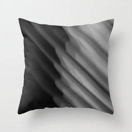 fabric Throw Pillow