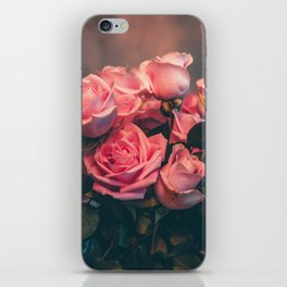 Pink Rose Center Piece iPhone Skin