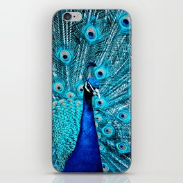 Peacock  Blue 11 iPhone Skin