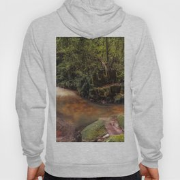 Forest Panorama Hoody