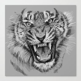 Tiger Portrait Animal Design Canvas Print
