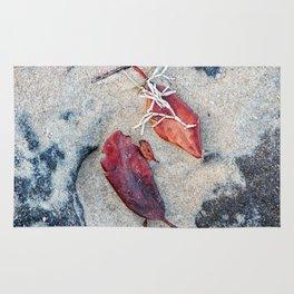 Coralline algae and dead leaf on sand Rug