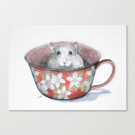 Rat in a cup Canvas Print
