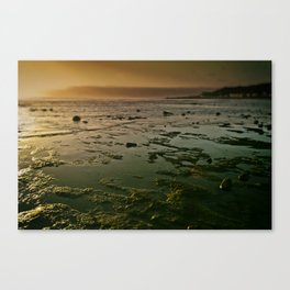 Before the Noise Canvas Print