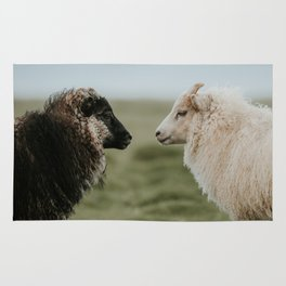 Sheeply in Love - Animal Photography from Iceland Rug