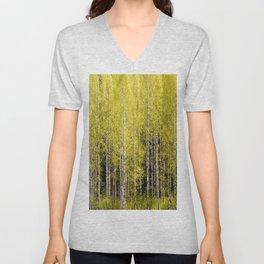 Lovely spring atmosphere - vibrant green leaves on the trees - beautiful birch grove Unisex V-Neck