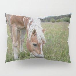 Blonde Beauty Pillow Sham