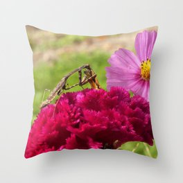 Praying Mantis Dining on a Moth Throw Pillow