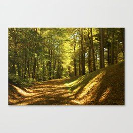 VERMONT SOUTHERN TRAIL Canvas Print