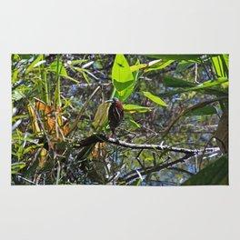 A Green heron in Corkscrew- horizontal Rug