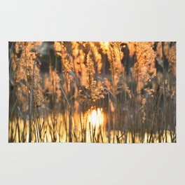 Light of rising sun in the grass makes as if the grasses are in fire Rug