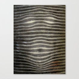 Pareidolia-4 Canvas Print