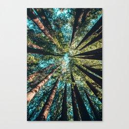 Treetop green blue Canvas Print