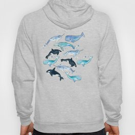 Whales, Orcas & Narwhals Hoody