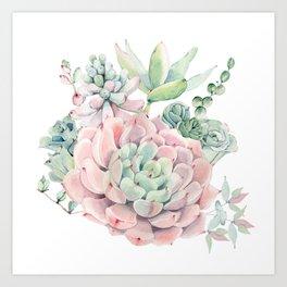 Pink Succulents by Nature Magick Art Print