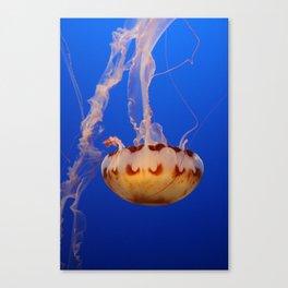 Medusa Jelly Canvas Print