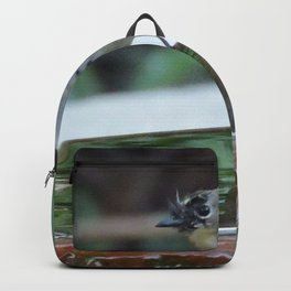Reading the Evening Mirror Backpack