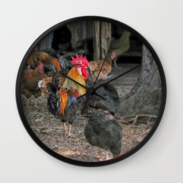 Rooster in the hen house Wall Clock