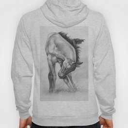 Young, Wild and Free Hoody