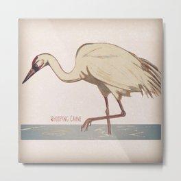 Whooping Crane Metal Print