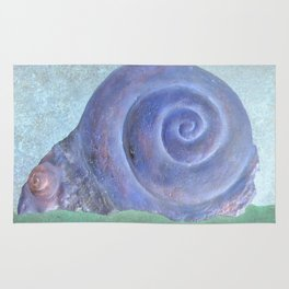 Moon Snail Aglow Rug