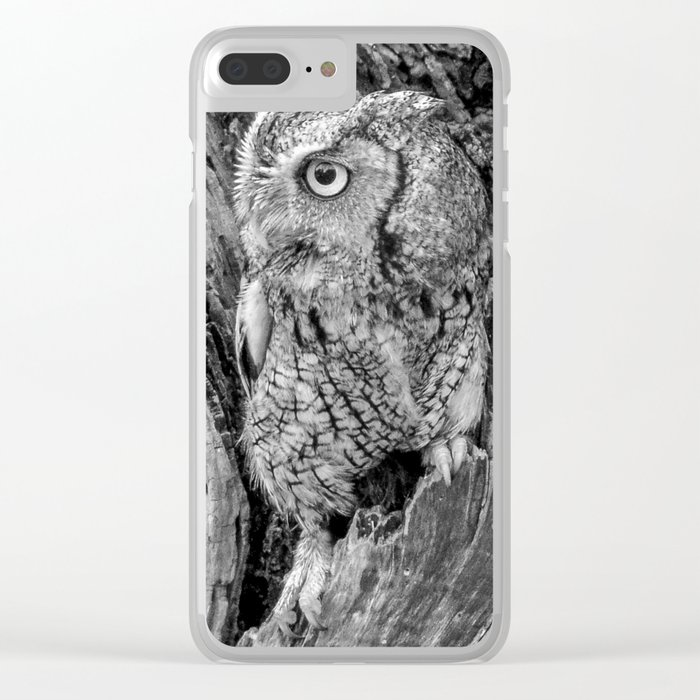 Echo the Screech Owl by Teresa Thompson Clear iPhone Case