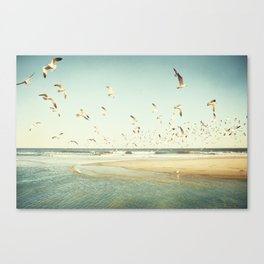 Birds on Beach Photography, Seagulls Flying Coastal Photo, Teal Bird Ocean Picture, Turquoise Aqua Canvas Print
