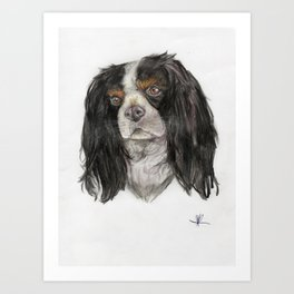 Cavalier King Charles spaniel dog original art print Art Print