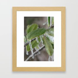 Icy Leaves Framed Art Print