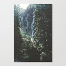 Telluride Forest Canvas Print