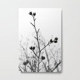 Atrophy Metal Print