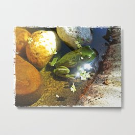 Frog in a Fountain Metal Print