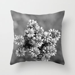 Black and White Floral Tiny Cobwebs on Flowers - Macro Close Up Throw Pillow
