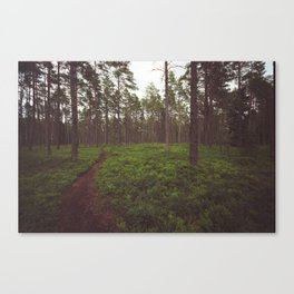 Swedish Views #5 Canvas Print