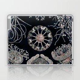 Sea treasures Laptop & iPad Skin