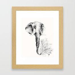 Elefante Framed Art Print