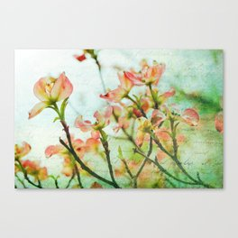 Thoughts of Spring Canvas Print