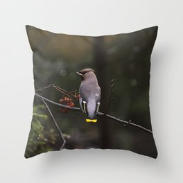 Bohemian waxwing on rowan tree branch Throw Pillow
