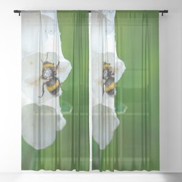 The Bumble Bee Sheer Curtain