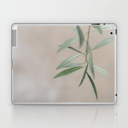 Finding Quiet Laptop & iPad Skin